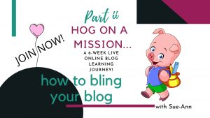 How to Bling Your Blog ii Title Visual